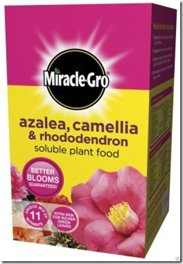 Miracle Gro Azalea Fertiliser